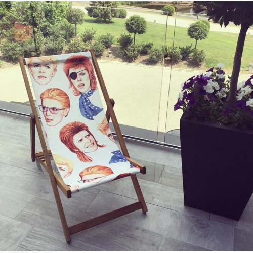 Fabulous Bowie - canvas deck chair by Helen Green