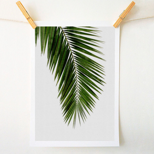 Palm Leaf I - original print by Orara Studio