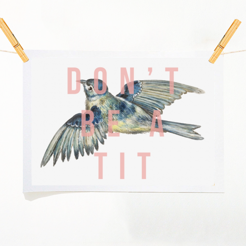 Don't Be A Tit - original print by The 13 Prints