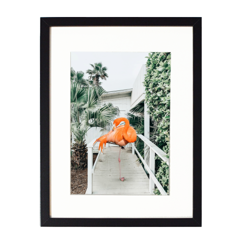 Flamingo Beach House - printed framed picture by Uma Prabhakar Gokhale