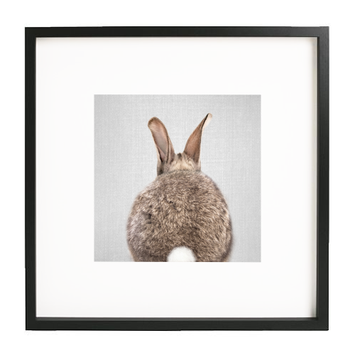 Rabbit Tail - Colorful - printed framed picture by Gal Design