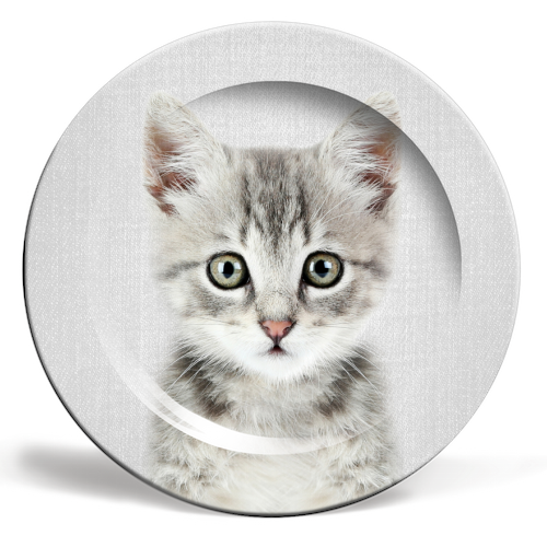 Kitten - Colorful - personalised dinner plate by Gal Design