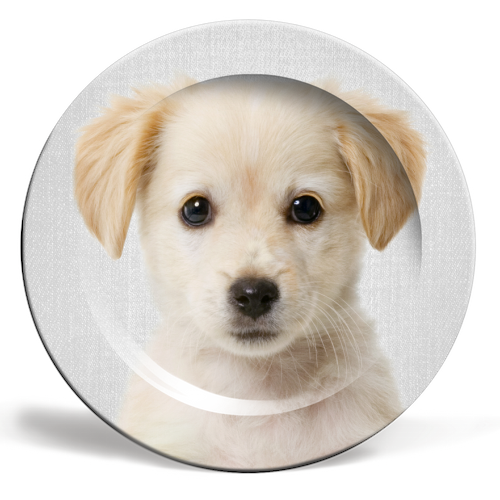 Golden Retriever Puppy - Colorful - personalised dinner plate by Gal Design
