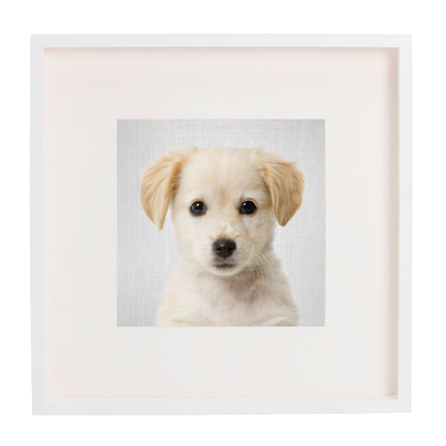 Golden Retriever Puppy - Colorful - printed framed picture by Gal Design