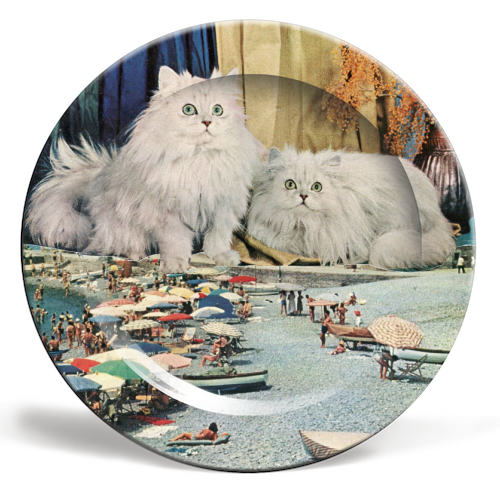 Cats beach - ceramic dinner plate by Maya Land