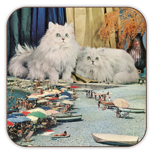 Cats beach - personalised drink coaster by Maya Land